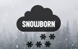 Ігровий провайдер Snowborn