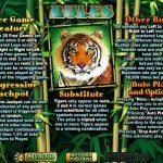 Правила гри в ігровому автоматі Tiger Treasures
