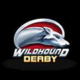 Гральний автомат Wildhound Derby