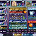 Правила гри в ігровому автоматі Mister Money