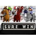 Гральний автомат Sure Win